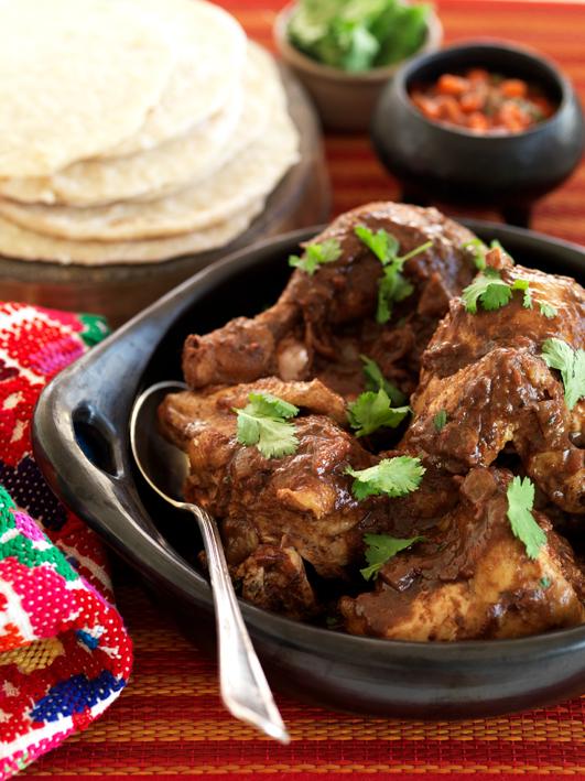 Mexican Chicken Mole Stew